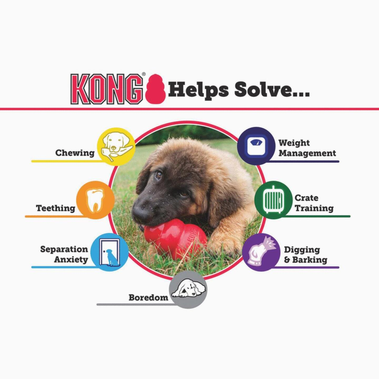 Kong Classic Dog Chew Toy, Up to 20 Lb. Image 6